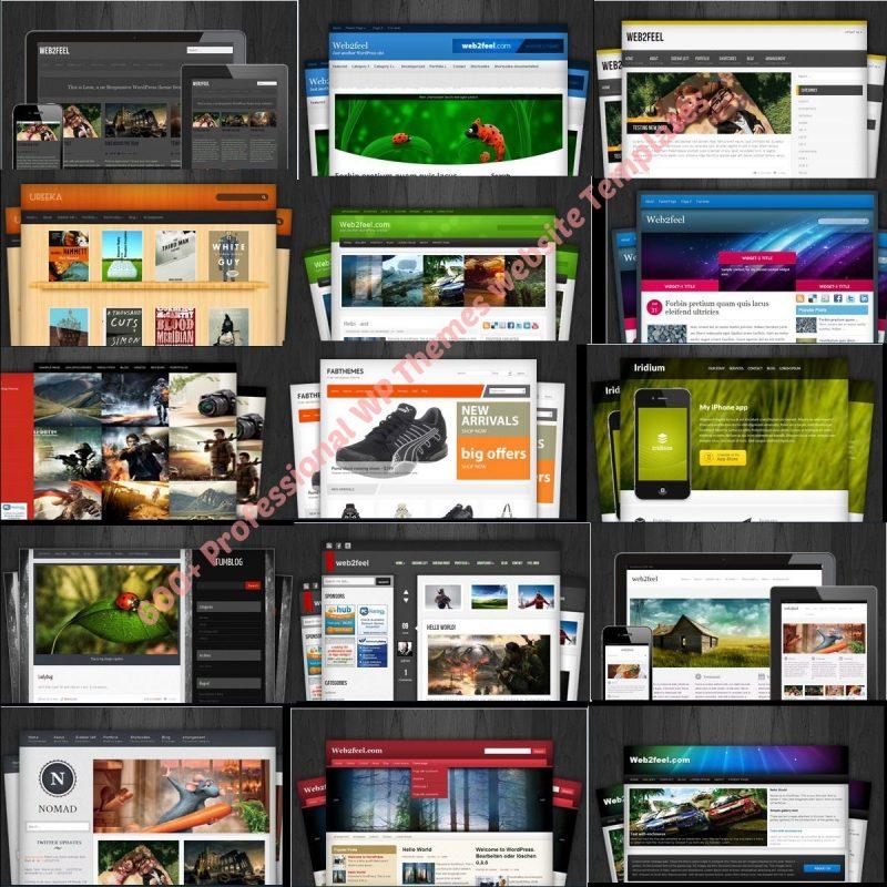 600+ WordPress Premium Themes, Plus WP Video Training and Mega-pack Clip Arts 1