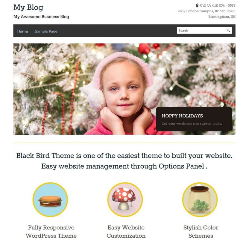 Wordpress Website With 3 Months Free Hosting  10 + Plugins 1
