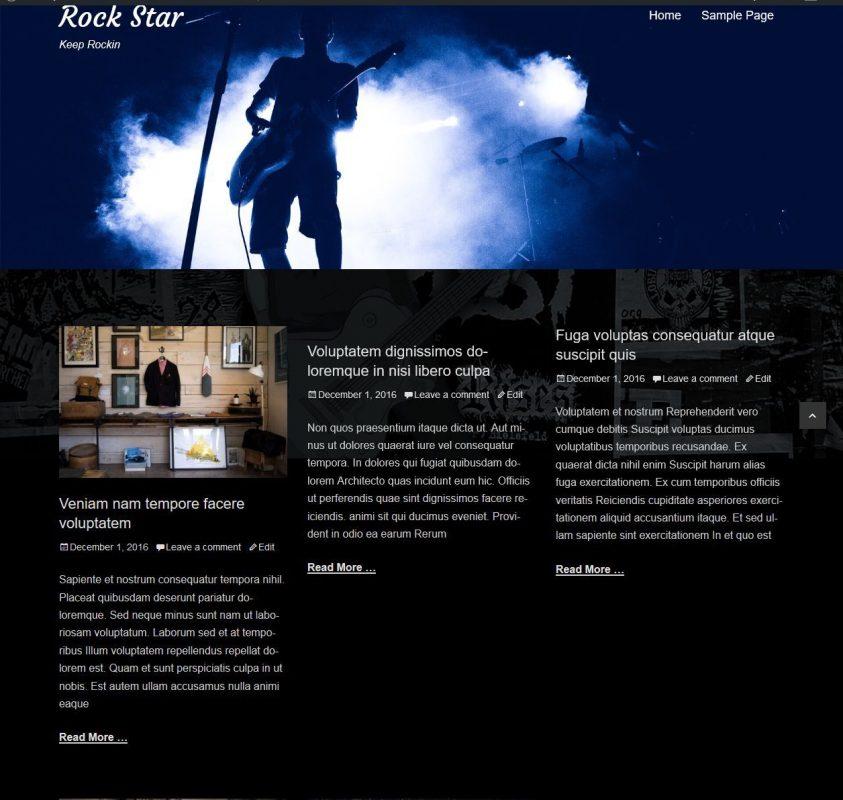 Wordpress Rock Star Website With 3 Months Free Hosting  10 + Plugins 1