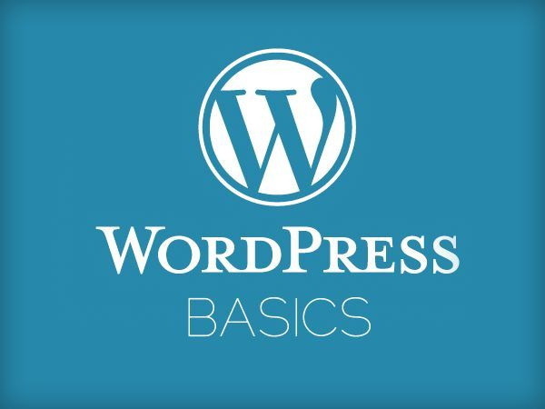 Wordpress Basics- 11 Video Tutorials on 1 CD 1