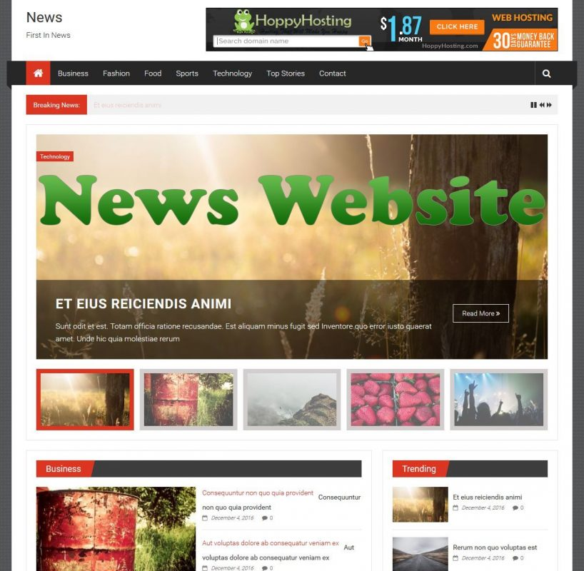 Wordpress News Website With 3 Months Free Hosting 10 + Plugins 1