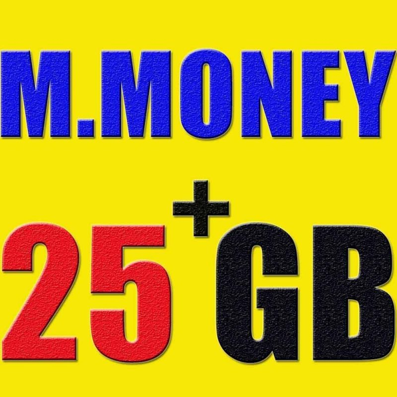 Make money online + 25.GB collection video tutorials ebooks softwares wordpress 1