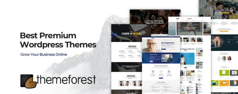 +100 Premium Themeforest WordPress Themes - 2019 16
