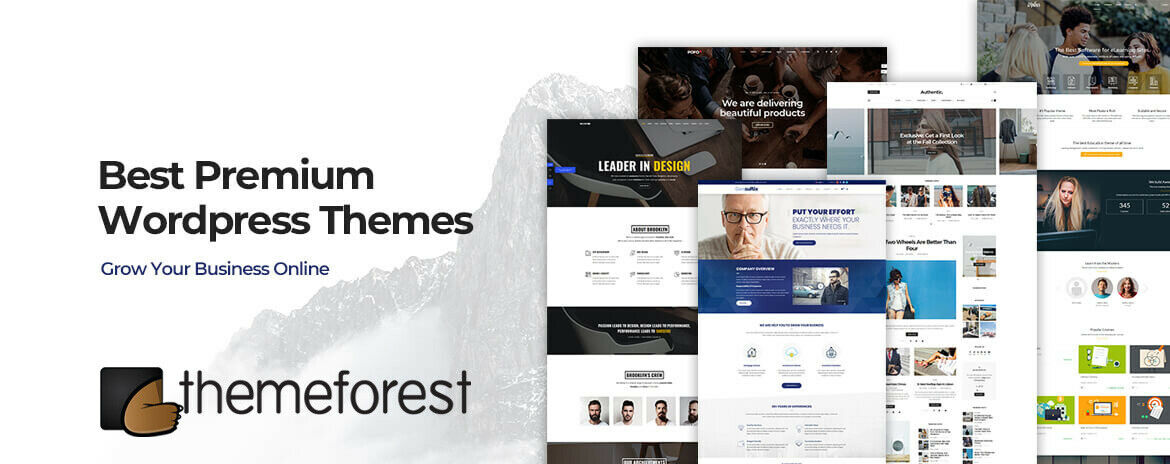 +100 Premium Themeforest Wordpress Themes - 2019 12