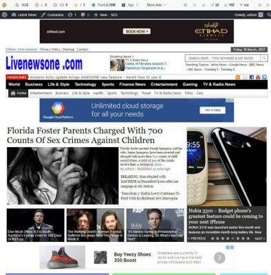 Full %100 Autopilot WordPress News Website - Passive Income - Free Installation 9