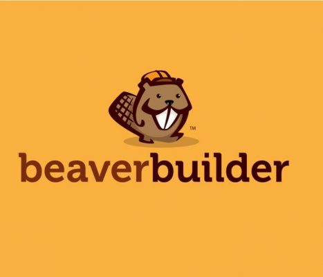 Beaver builder Pro PACK |8 in 1| WordPress plugins & theme and ALL the Addon's 5