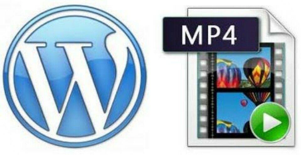 [FREE SHIP!] 5 Wordpress How To Videos! 5 MP4 Wordpress Tutorials! 1