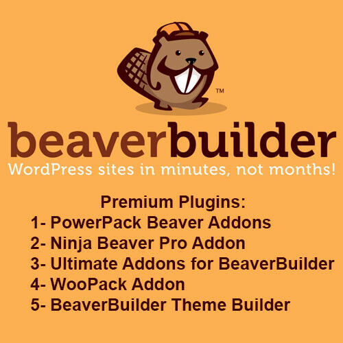 Beaver Builder Pro WordPress Plugin - Updated Version 3
